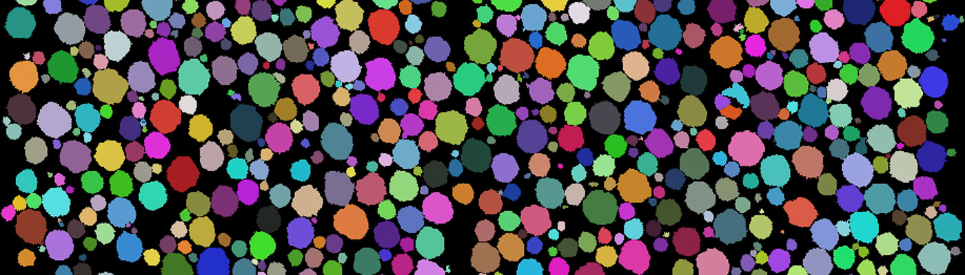 Colourful spots on a black background